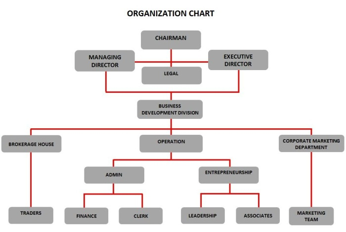 latest org chart aza
